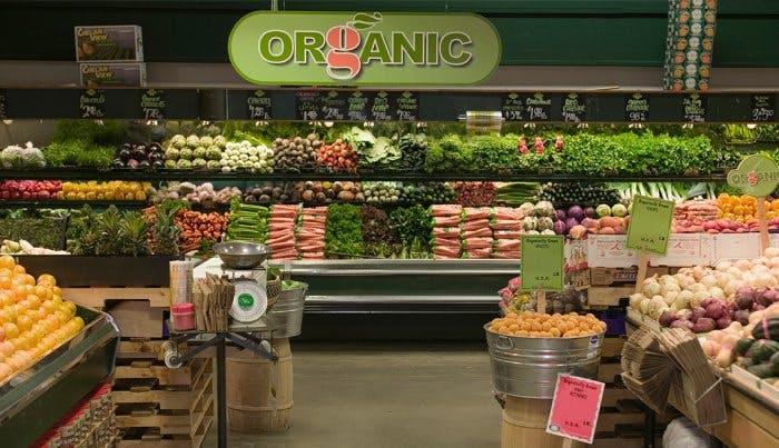Organic Food Trend