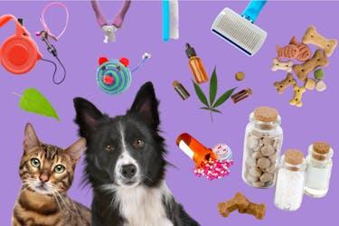 Pet Supplement Trends