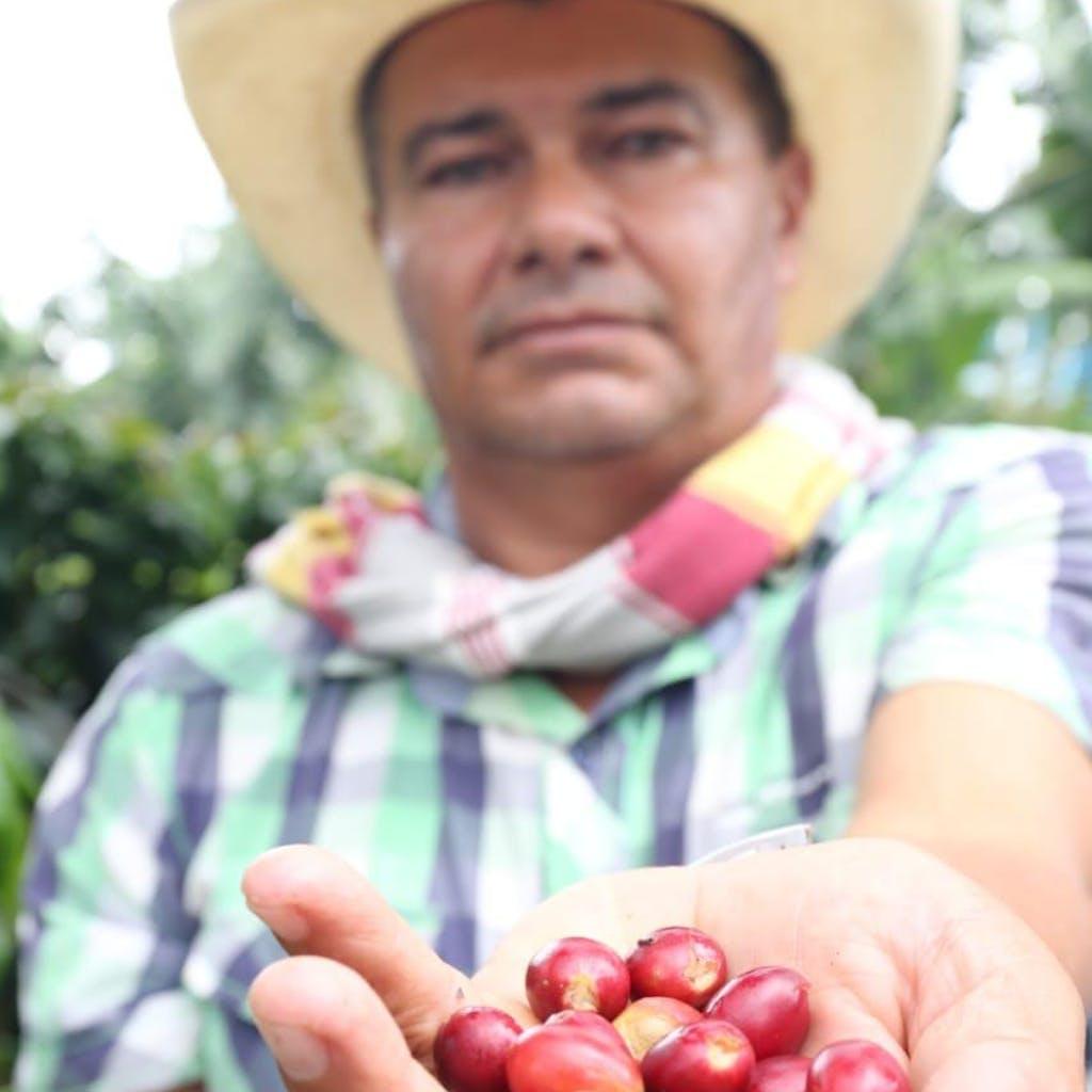 Coffee Fruit Farmer